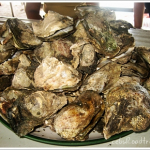 Craving for Talaba?